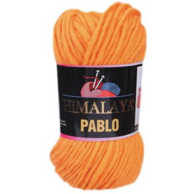 Pablo (шерсть 100%) (100гр. 100м.)